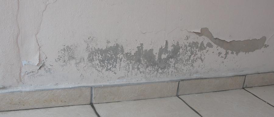 Como quitar humedad de una pared fotos eliminar humedad - Quitar humedad pared ...